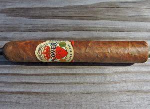 Cigar Review: Felipe Gregorio Power 2014 Triple R