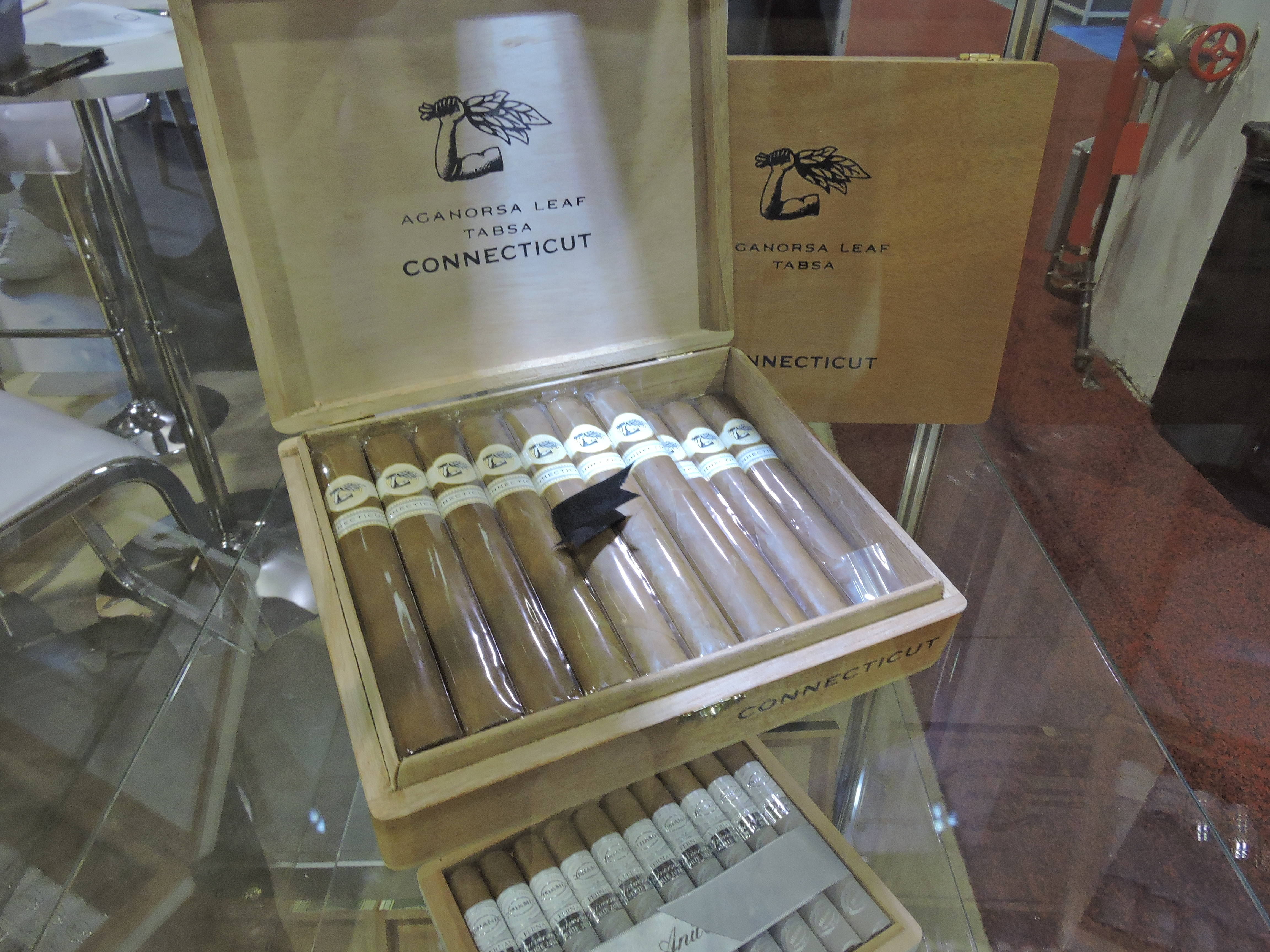 Feature Story: TABSA Goes Connecticut Shade at IPCPR 2016