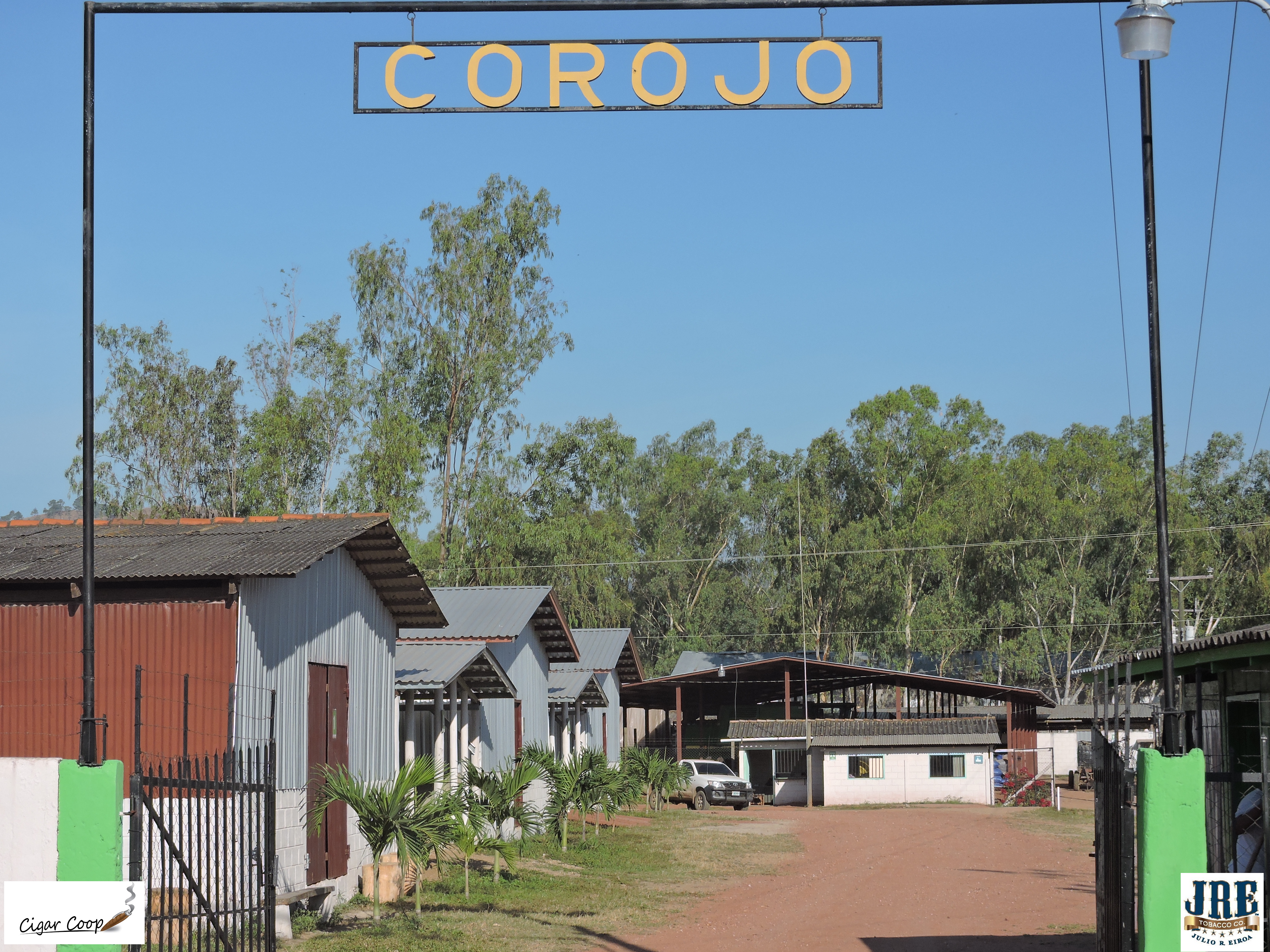 Feature Story: A Visit to the JRE Tobacco Company Operations: Part 1-The Corojo Farm