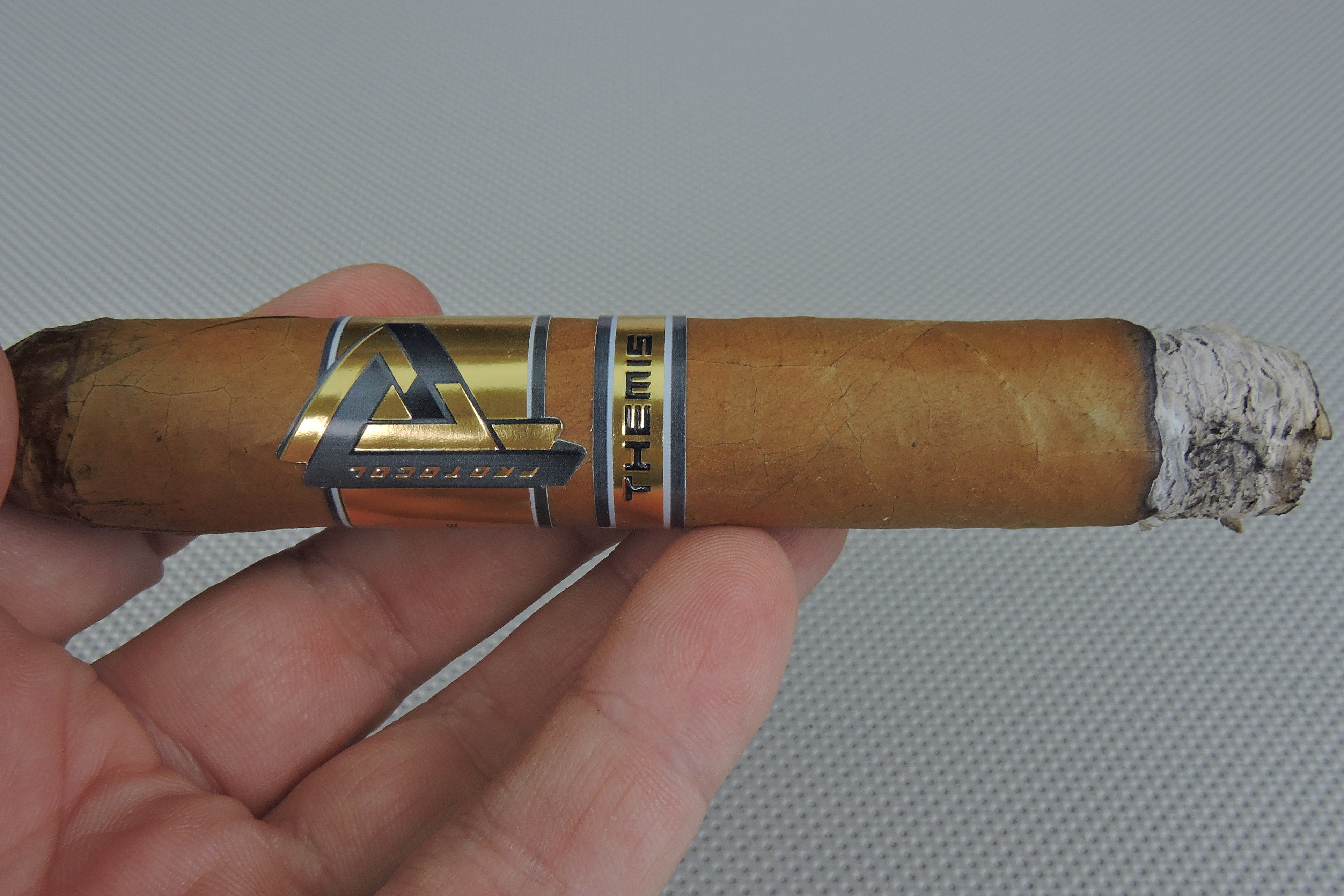 Protocol Themis Robusto-Burn