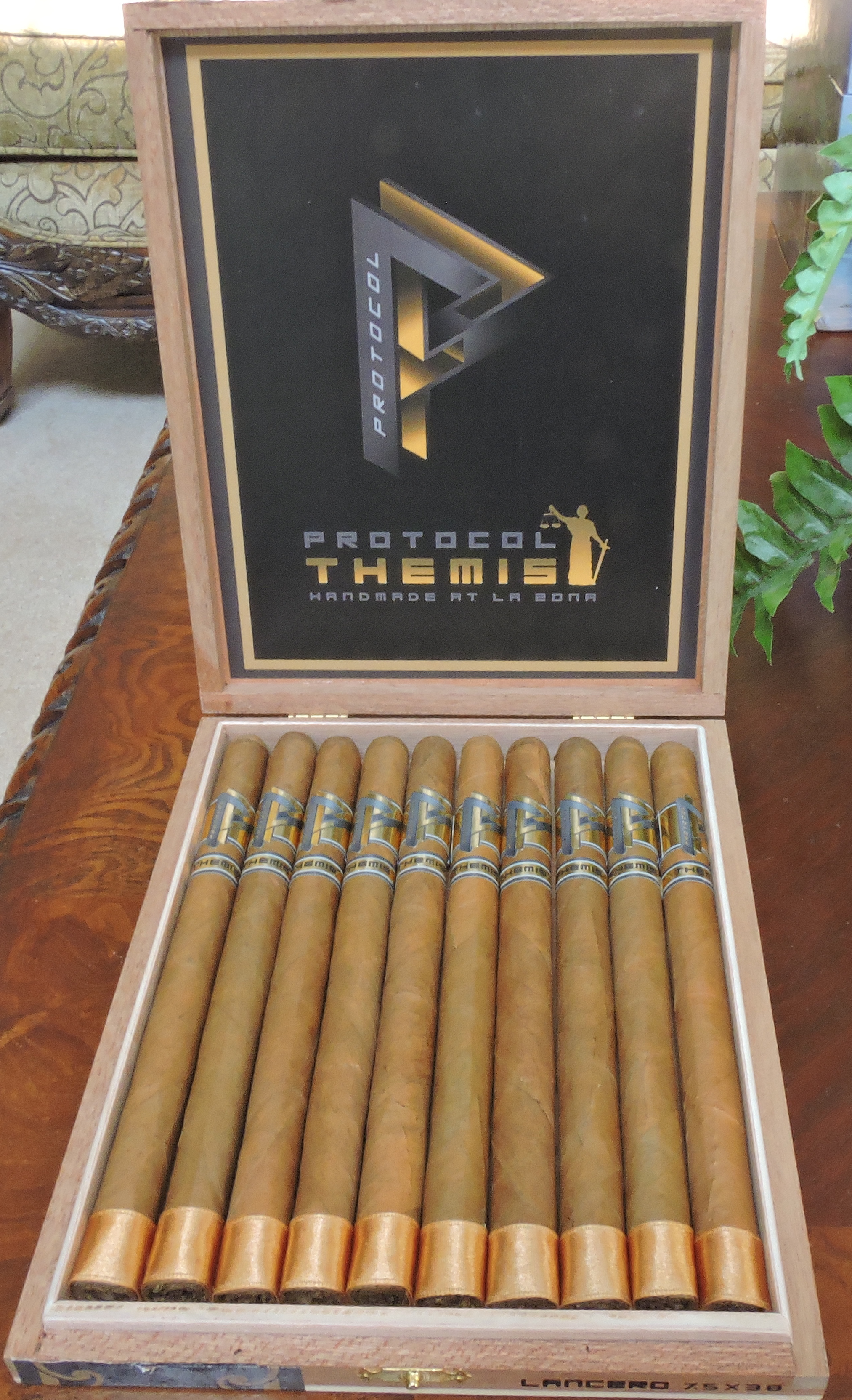 Protocol Themis Lancero - Open Box