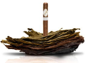 Cigar News: Davidoff Complexion Set for Limited Release